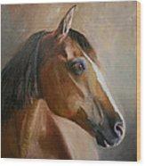 Horse Portrait II Wood Print