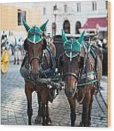 Horses And Carriage In Vienna Wood Print