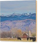 Hot Air Balloon Rocky Mountain Country View Wood Print