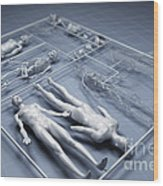 Human Cloning Wood Print