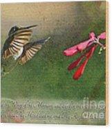 Hummingbird Morning With Verse Wood Print