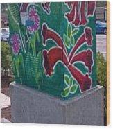 Hummingbird Traffic Signal Box Wood Print