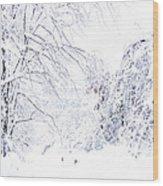 Hurricane Sandy Snow  Wood Print