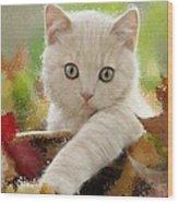 I Love Kittens Wood Print