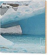Ice Ice Baby.. Wood Print