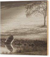 In Quiet Solitude Wood Print