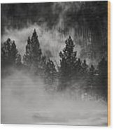 In The Steam Wood Print