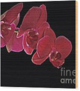 Inspired By Orchids Wood Print