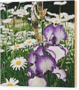 Iris And Daisies Wood Print