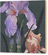 Iris Study Wood Print by Suzanne Schaefer