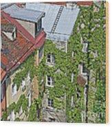 Ivy Courtyard Wood Print