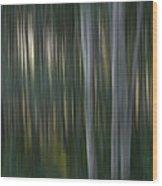 Jikini Senmu Ichikaku O E Kitaru Wood Print
