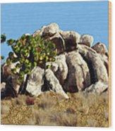 Joshua Tree California Wood Print