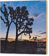 Josua Trees Beautifully Lit During Sunrise In Joshua Tree Nation Wood Print