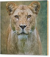 Jungle Cat Wood Print