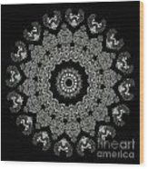 Kaleidoscope Ernst Haeckl Sea Life Series Black And White Set 2 Wood Print by Amy Cicconi