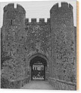 Keys To The Castle - Black And White Wood Print