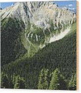 Kindersley Pass Wood Print