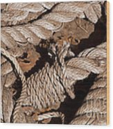 Knotted Wood Print