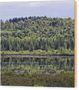 Lake Reflection Wood Print