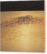 Last Rays Of Light Wood Print
