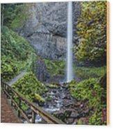 Latourell Falls Wood Print