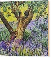 Lavender And Olive Tree Wood Print