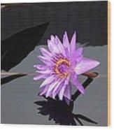 Lavender Lily Wood Print