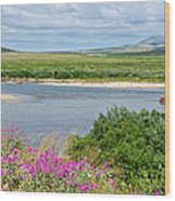 2-lay Of The Land-grizzly Bears In Moraine River In Katmai Np-ak Wood Print