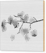 Leaves In Black And White Wood Print