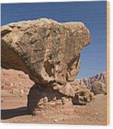 Lees Ferry Rock Formation Arizona Wood Print