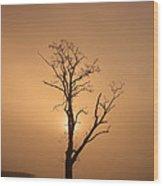 Loch Ard Glow Wood Print