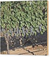 Lorimar Grapes Wood Print