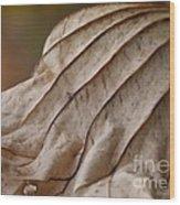 Lotus Leaf Wood Print