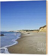 Lucy Vincent Beach Wood Print