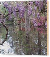 Magnolia Plantation Gardens Series II Wood Print