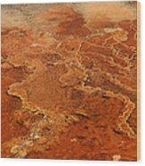 Mammoth Hot Springs Wood Print