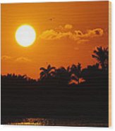 Marco Island Sunset Wood Print