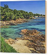 Mediterranean Coast Of French Riviera Wood Print by Elena Elisseeva