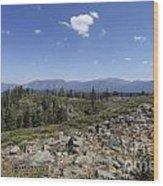Mount Tallac Trailhead  Wood Print