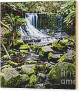 Mt Field National Park Wood Print