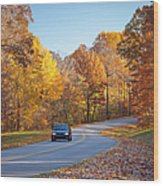 Natchez Trace Wood Print
