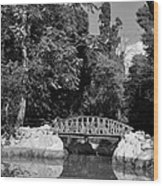 National Garden In Athens Wood Print