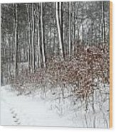 Nature In Winter Under Snow In Denmark Wood Print