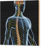 Nervous System Wood Print
