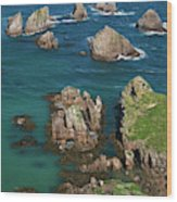 New Zealand, South Island Wood Print