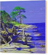 North Florida Beach Wood Print by Annette Allman