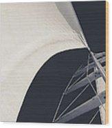 Obsession Sails 10 Wood Print
