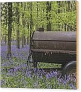 Old Farm Machinery In Vibrant Bluebell  Spring Forest Landscape Wood Print