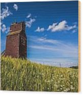 Old Grain Elevator Wood Print